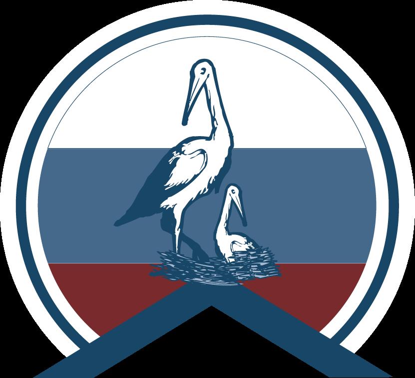 vsms_logo.png